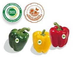 Trois poivrons, vert, jaune et rouge accompagnés des logos des labels Haute Valeur Environnementale et Demain La Terre