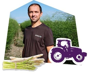Portrait d'un producteur d'asperge dans son champ
