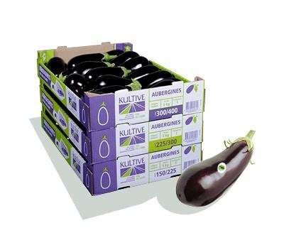 Cagettes en carton contenant des aubergines Kultive