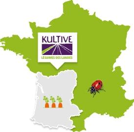 Carte de France présentant la culture des carottes dans les Landes.