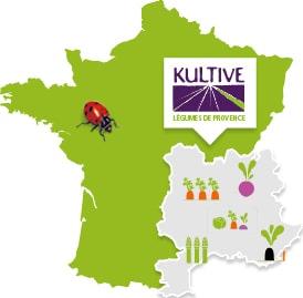 Carte de France présentant la culture des légumes de Provence : carotte, navet, radis noir, mélange de légumes, apserges.