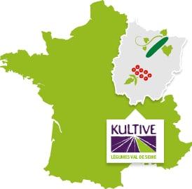 Carte de France présentant la culture des légumes du Val de Seine : tomate-cerise et concombre.