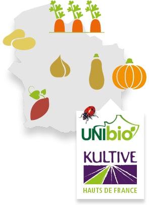 Carte du terroir des Hauts de France, accompagné des pictos carotte, pomme de terre, patate douce, condiments, courge et du logo Kultive - Légumes Hauts de France