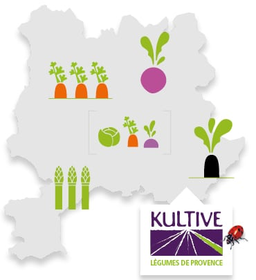 Carte du terroir de Provence, accompagné des pictos carotte, mélange de légumes, radis, asperge, navet et du logo Kultive – Légumes de Provence