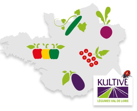 Carte du terroir de Val de Loire, accompagné des pictos concombre, tomate-cerise, aubergine, poivron, betterave et du logo Kultive - Légumes Val de Loire