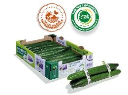 Cagette en carton contenant des concombres de calibre 300-400, logo des labels HVE et Demain La Terre. Trois concombres entourés de bagues en plastique au premier plan.