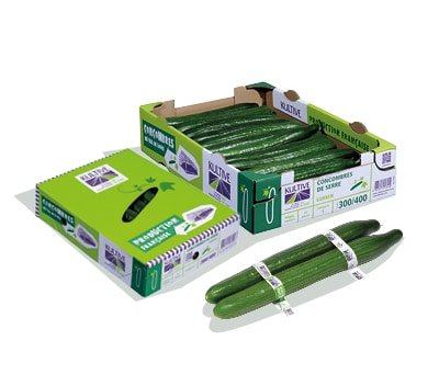 Cagette en carton, contenant des concombres de calibre 300-400, trois concombres entourés de bagues en plastique au premier plan.