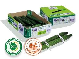 Boite en carton contenant des concombres de calibre 400-500, logos des labels HVE et Demain La Terre, deux concombres entourés de bagues en plastique au premier plan.