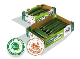Deux boites en carton, contenant des concombres de calibre 500-600 et plus, logo des labels HVE et Demain La Terre au premier plan.