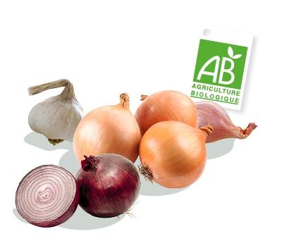 Plusieurs condiments bio : échalote, oignon rouge, oignon jaune, gousse d'ail ; accompagnés du logo du label Agriculture Biologique.