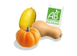 Courge spaghetti, courge butternut et potimarron Kultive, accompagné du logo du label Agriculture Biologique