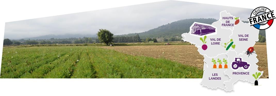 Paysage de Provence représentant l'esprit de cultiver la proximité, accompagné d'une carte de France des terroirs Kultive et du logo du label origine France, superposé sur l'image.