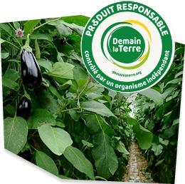Plans d'aubergines dans leur serre, accompagnés du logo du label Demain la Terre