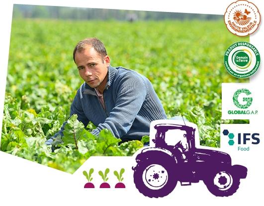 Portrait d'un producteur de betterave du Val de Loire dans son champ, accompagné des logos des labels Demain la Terre, HVE, Global G.A.P et IFS Food superposés sur l'image.