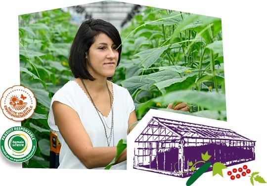 Portrait d'une productrice de concombre du Val du Seine dans sa serre, accompagné du logo des labels Demain la Terre et HVE superposés sur l'image.