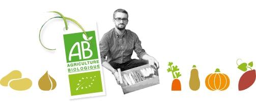 Portrait du producteur de légumes bio des Hauts de France avec des dessins de la production de pomme de terre, condiments, carotte, courge, patate douce