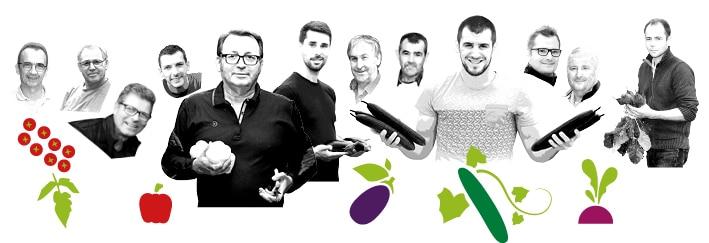 Portraits des producteurs Kultive du Val de Loire, avec des dessins de leur production de concombre, tomate cerise, betterave, poivron et aubergine.