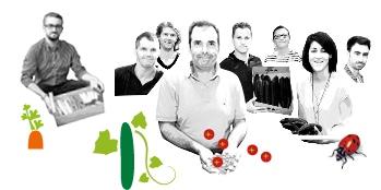 Portraits des producteurs Kultive du Val de Seine, avec des dessins de leur production de concombre et tomate cerise.