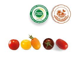 Tomates-cerises apéros formes et couleurs différentes : rouge, jaune, orange, rondes et allongées ; accompagnés des logos des labels HVE et Demain La Terre.