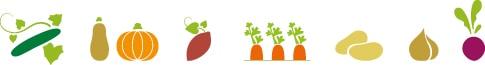 Dessin de tous les légumes bio Kultive : concombre, courge, patate douce, carotte, pomme de terre, condiment, betterave